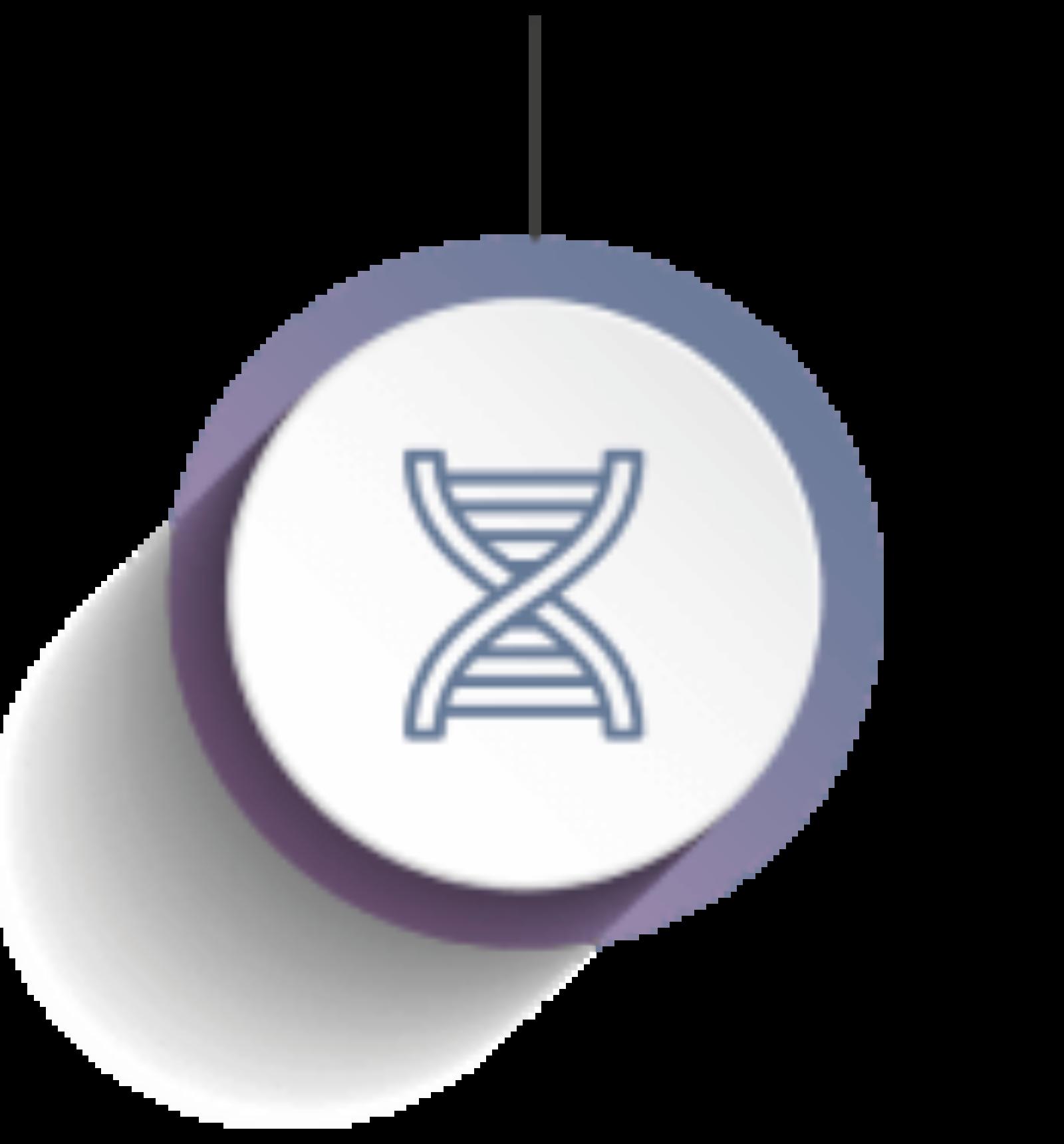 Icon DNA Probe
